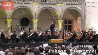Wawel: musica festiva 2010