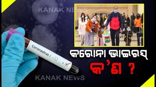Special Report: Lets Know About Coronavirus Symptoms, Causes, Treatments, Types | Kanak News