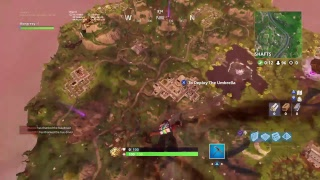 Ps4 Pro Player 13 Fortnite