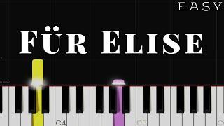 Für Elise - Beethoven   EASY Piano Tutorial