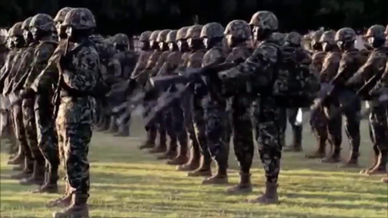 las fuerzas armadas de m xico y su disciplina militar