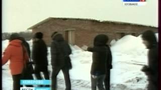 В Кемерове строится приют для бездомных животных