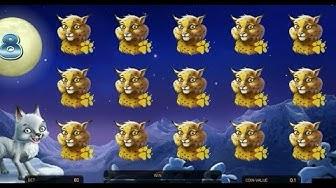 BIG WIN (x264) - Wolf Cub Online Slot Machine - NetEnt Slots
