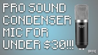 neewer nw 700 professional condenser microphone review test