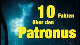 10 FAKTEN über den PATRONUS