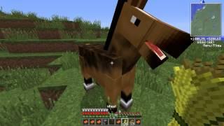 Minecraft Według Adacha odc.69 - Konie i chatka wiedźmy