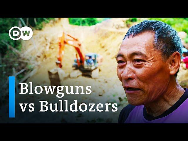 The last nomads of Borneo   DW Documentary