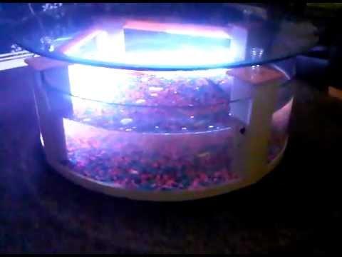my first aquarium coffee table fish tank (freshwater) - youtube