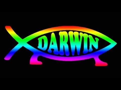 S-RANGE - Darwin Project