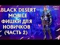 Black desert Mobile фишки для новичков и не только (часть 2)(слоты персонажа,вес,мобы,кормление)