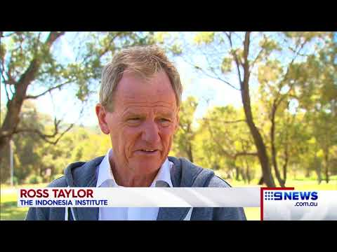 Bali Tourism | 9 News Perth