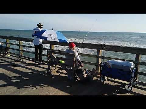5-16-20 - Seaview Fishing Pier - Fishing Report
