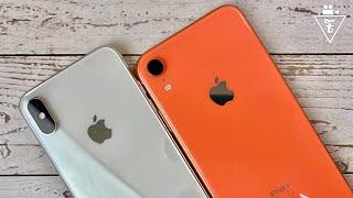 iPhone XR и XS в 2020 - какой выбрать