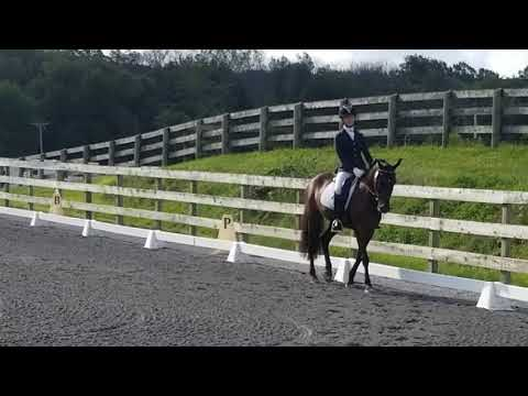 Proudly Shining and Hannah Irons - 2nd Level Test 1