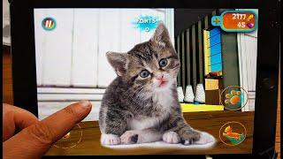 The Cat Simulator - Pet Simulation Games Cat Sim Online Android Gameplay Video #2