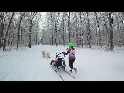 участники с 53 по 56 номер - Рождественские горки 2020 Самара
