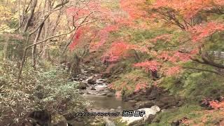 茨城県内の素敵な風景映像を「ほぼ週刊」でお届けいたします。 第六回は...