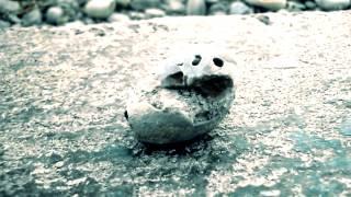 My Pet Rock ! :)