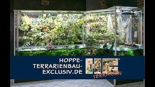 Bau eines fast 5 qm großen Aqua-Terrariums für Fische mit Regenwaldlandschaft im Hintergrund