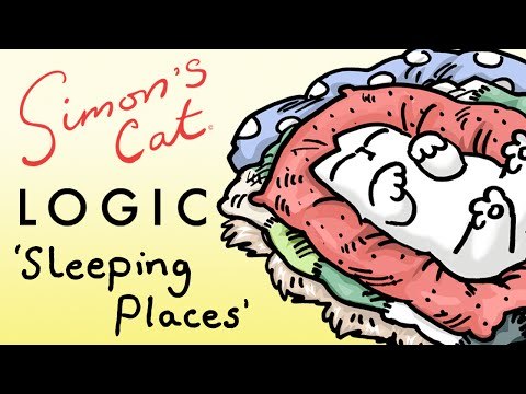 Thumbnail: Simon's Cat Logic - Why Do Cats Sleep in Unusual Places?!
