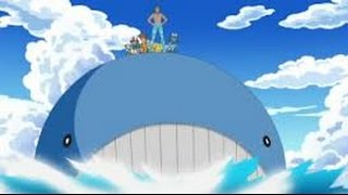 Wailord - How to Use + Strategy Guide | Pokémon Showdown