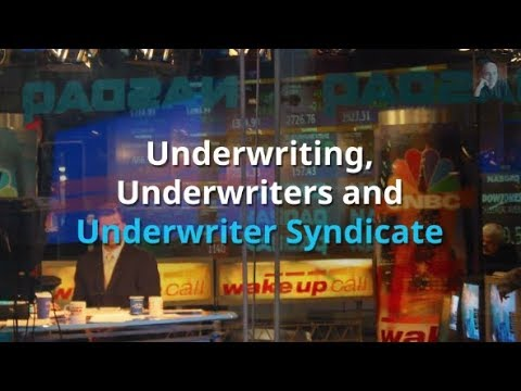 Underwriter Syndicate, Roadshow, and IPO Allocation