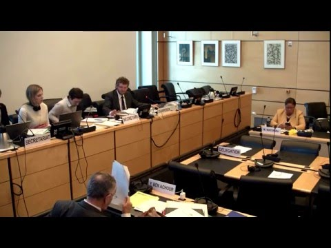 Human Rights Committee 116th Session - Draft General Comment on the Right to Life part 2