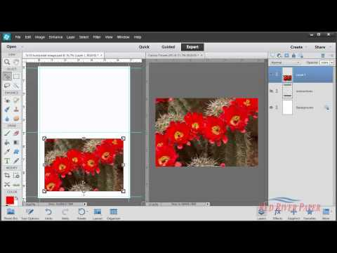 Greeting Card Setup Printing Photoshop Elements 11 12 13 Windows Canon Horizontal