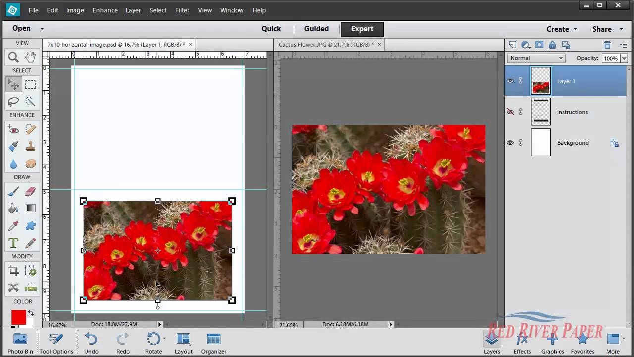 Greeting Card Setup Printing Photoshop Elements 11 12 13 Windows