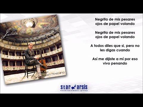 Julian Rodriguez Blanco - El Son De La Negra (Karaoke instrumental)