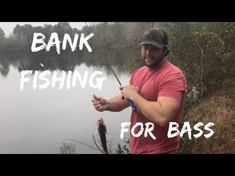 G2GO- Guide To Georgia Outdoors: Bank Fishing