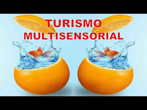 Turismo Multisensorial José Luis Barrios Rada OLELATINO