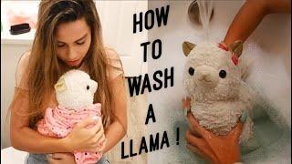Giving My CRAZY Lil Llama A BATH!!