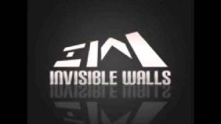 """Invisible Walls """"nu white - ElectroClash 2"""""""