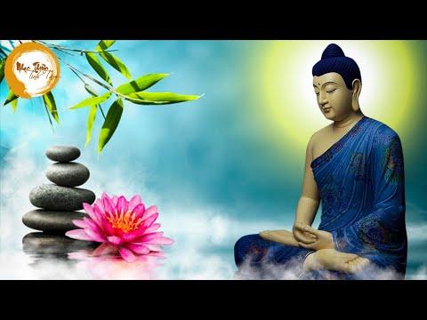 Nhạc Thiền - Nhạc Thiền An Nhiên Tự Tại, Âm Nhạc Chữa Lành Tâm Hồn, Bình Yên Mỗi Ngày - RẤT HAY