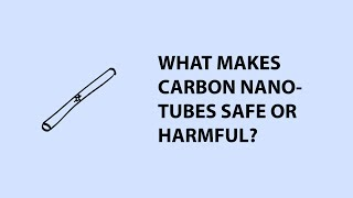 Carbon Nanotubes Risks - exposure, chemistry and physical form