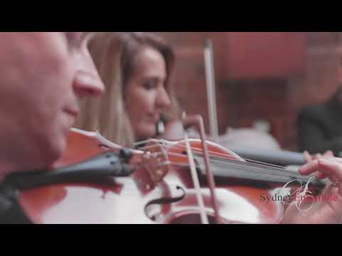 clocks-by-coldplay-performed-live-at-wedding-reception-by-string-quartet