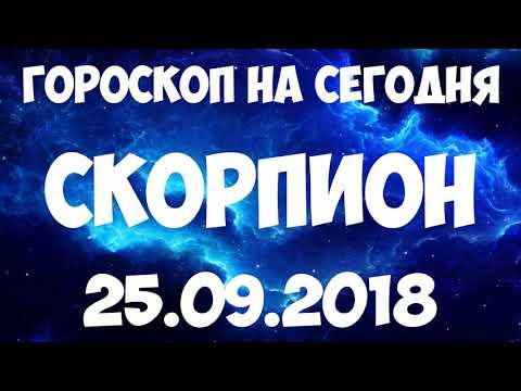 Гороскоп скорпион на завтра 8 января любовный гороскоп на сегодня скорпион.