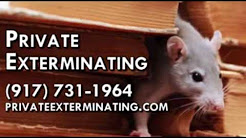 Pest Control Service, Pest Control Company in Queens NY 11417