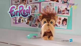 Hasbro FurReal Friends - Piesek Kudłaty Shaggy E0497 - www.krainazabawy.pl