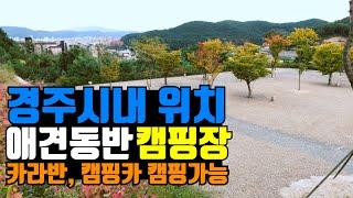 애견캠핑장 카라반캠핑 가능한 경주 휴앤락 캠핑장 본격 …