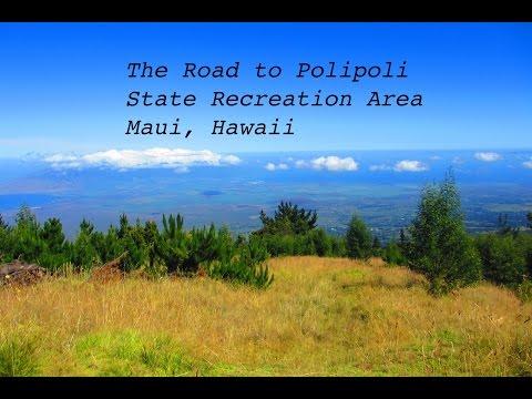 Road to Polipoli State Recreation Area- Kula, Maui