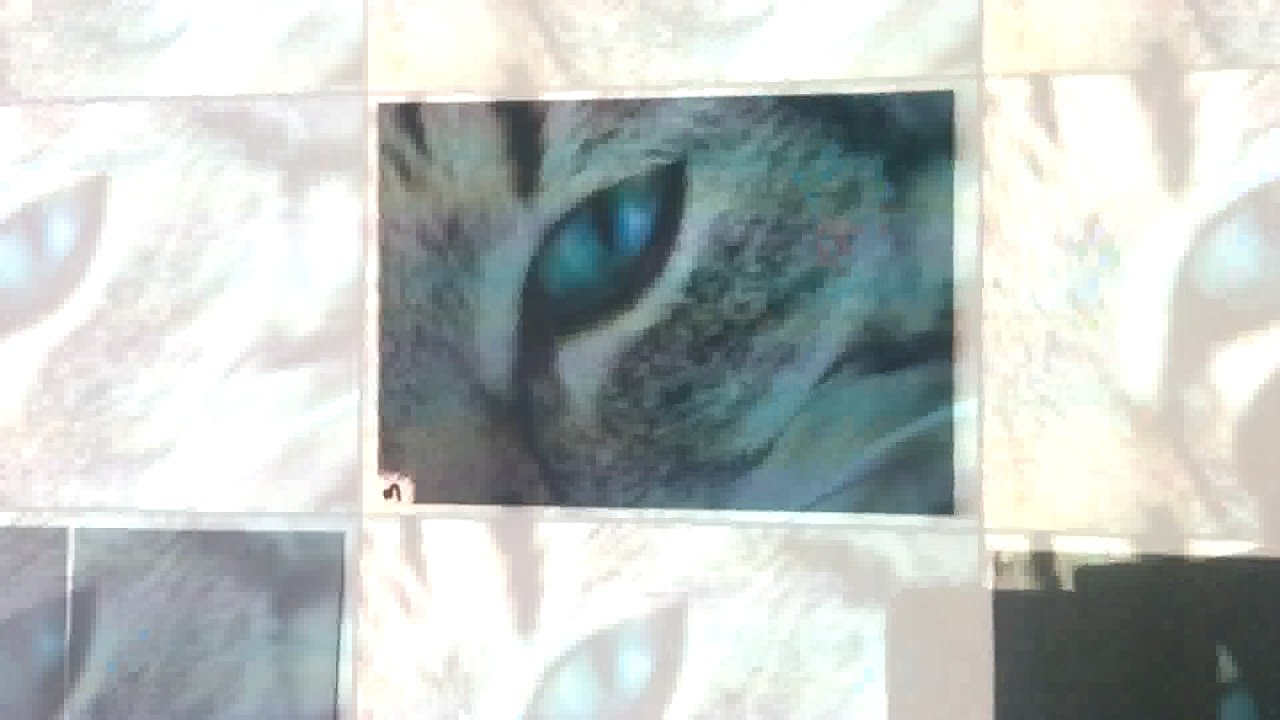 Peinture Pour Ecran Retroprojecteur diy dark screen paint for french #2 / peinture sombre projecteur #2