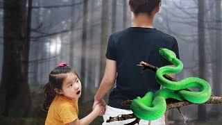 뱀을 직접 만져볼수 있다고요 서은이의 파충류 박물관 체…