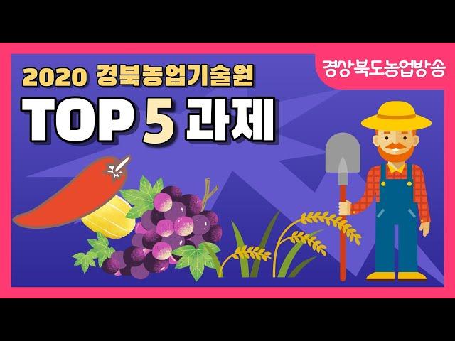 [경북농업기술 특집] 2020 경북농업기술원 TOP5 과제