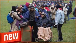 Politik | Obergrenze in Deutschland nicht erreicht | Nur 166000 Asylanträgeim Jahr 2018