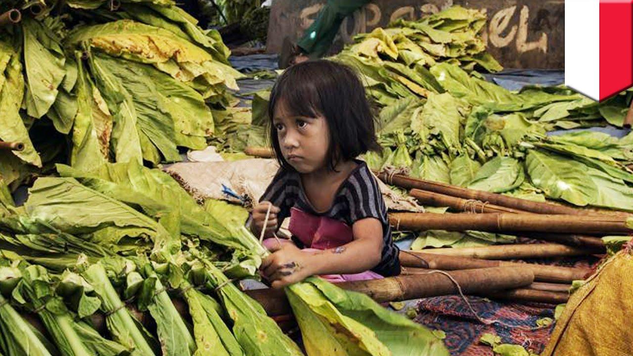 Child labor: Human Rig...