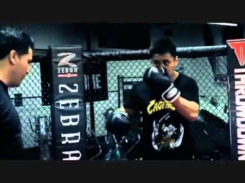 Cung Le Tribute