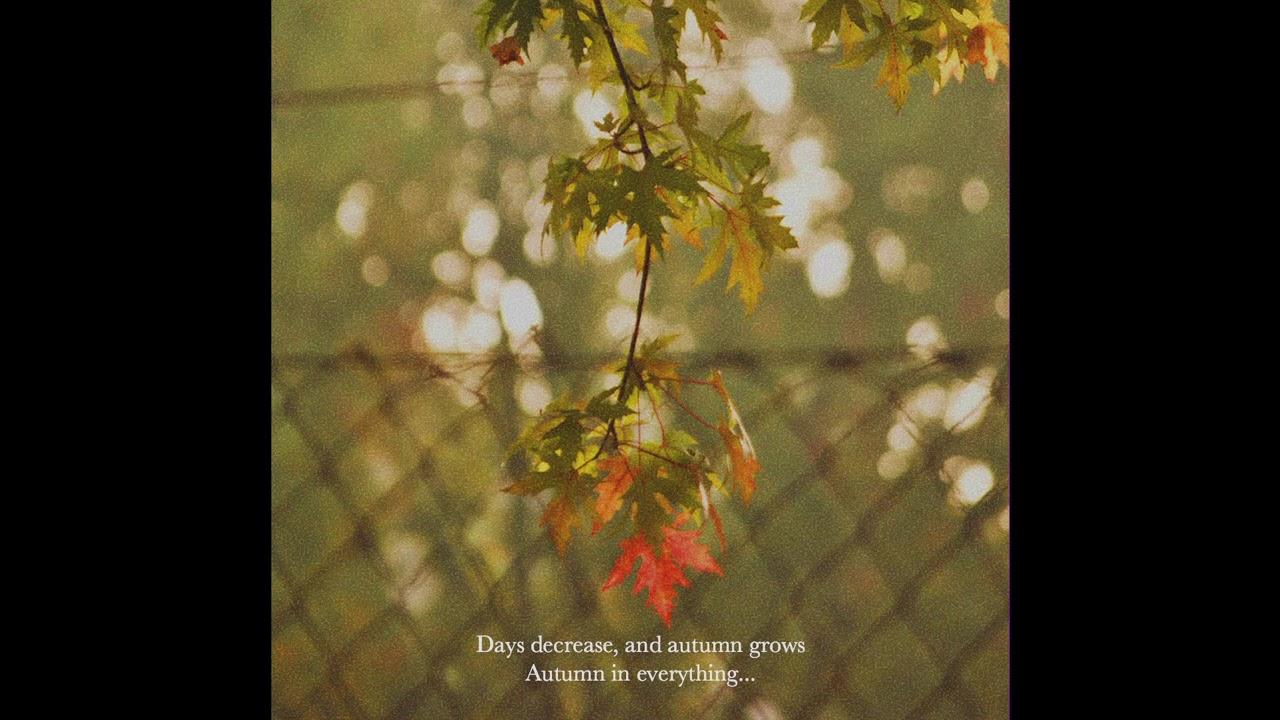 (FREE) Lo-fi Type Beat - Autumn Breeze