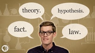 Theory vs. Hypothesis vs. Law… Explained!
